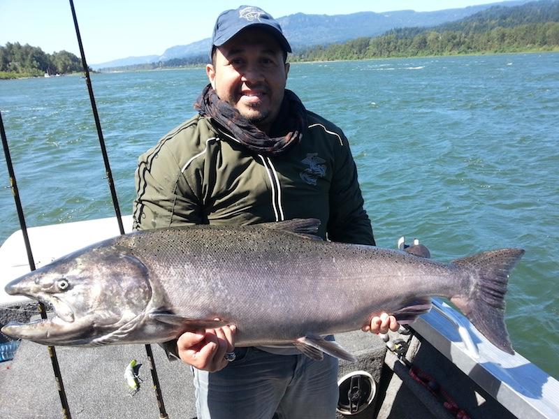 Fall Salmon Columbia